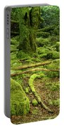 Landscape At Torc Waterfalls Portable Battery Charger