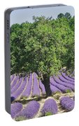 Lavender Field And Tree Portable Battery Charger