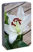 Lily Casa Blanca 1 Portable Battery Charger