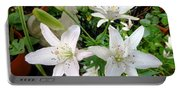 Lily White Portable Battery Charger