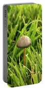 Lonely Little Mushroom Floating On The Grass Portable Battery Charger