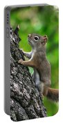 Lost Nuts Portable Battery Charger