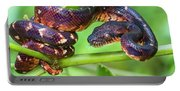 Madagascar Ground Boa Acrantophis Portable Battery Charger
