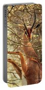 Male Gerenuk Portable Battery Charger