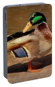 Male Mallard - Painted Portable Battery Charger