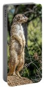 Meerkat Alert Portable Battery Charger by Kate Brown