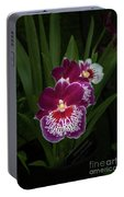 Miltonia Portable Battery Charger