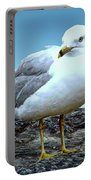 Moewe Seagull Portable Battery Charger