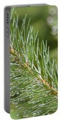 Moist Pine Tree Leaves With Water Droplets. Portable Battery Charger