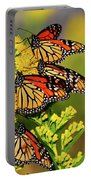 Monarch Gathering 2 Portable Battery Charger