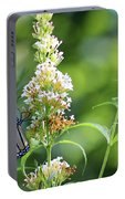 Monarch On White Butterfly Bush Portable Battery Charger