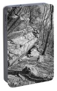 Mountain Trail Portable Battery Charger
