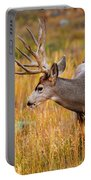 Mule Deer Buck In Rocky Mountain National Park Portable Battery Charger