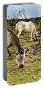 New Forest Ponies On The Heath Portable Battery Charger