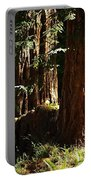 New Growth Redwoods Portable Battery Charger