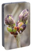 New Life In The Lilacs Portable Battery Charger