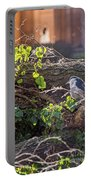 Night Heron At The Palace Revisited Portable Battery Charger by Kate Brown