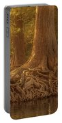 Old Cypress Tree Roots Portable Battery Charger