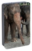 One Man, Two Elephants Portable Battery Charger