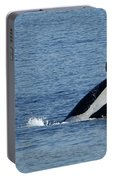 One Orca Leaping Portable Battery Charger