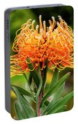 Orange Protea Portable Battery Charger