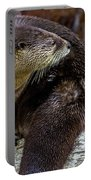 Otter Interrupted Portable Battery Charger by Kate Brown