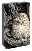 Owl In A Tree Portable Battery Charger