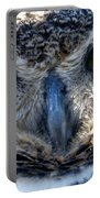 Owls Mascot 3 Portable Battery Charger