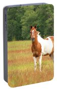 Paint Horse In Meadow Portable Battery Charger