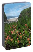 Paintbrush And Ice Plant, Garrapata Portable Battery Charger