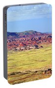 Painted Desert Panorama Portable Battery Charger
