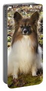 Papillon Sitting In Leaves Portable Battery Charger