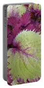 Patterns In Nature Portable Battery Charger