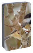 Peaceful Winter Chickadee  Portable Battery Charger