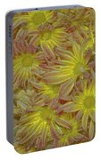Pelee Mums Plus Portable Battery Charger