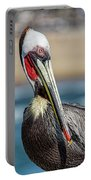Pelican Pose Portable Battery Charger