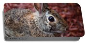 Peter Rabbit Two Portable Battery Charger