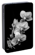 Phalaenopsis Orchids Black And White Portable Battery Charger