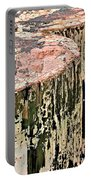 Pilings In Abstract Portable Battery Charger