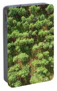 Pine Rows Aerial 2x1 Portable Battery Charger