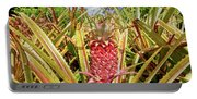 Pineapple Plant Ananas Pico Island Azores Portugal Portable Battery Charger