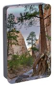 Ponderosa Pines In Slot Canyon Portable Battery Charger