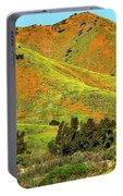 Poppy Hills And Gullies Portable Battery Charger