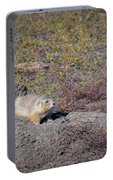 Prairie Dog 1 Portable Battery Charger