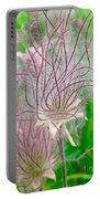 Prairie Smoke Portable Battery Charger by Ann E Robson