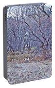 Prescott Arizona Watson Lake Bayou Trees Scrub Water Grasses 3142019 4916 Portable Battery Charger