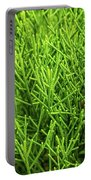 Pretty Green Portable Battery Charger by Nick Bywater