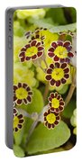 Primula Gold Lace Portable Battery Charger