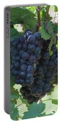 Purple Grape Bunches 13 Portable Battery Charger