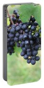 Purple Grape Bunches 20 Portable Battery Charger